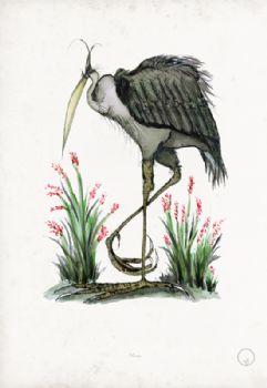 Heron - artist signed print